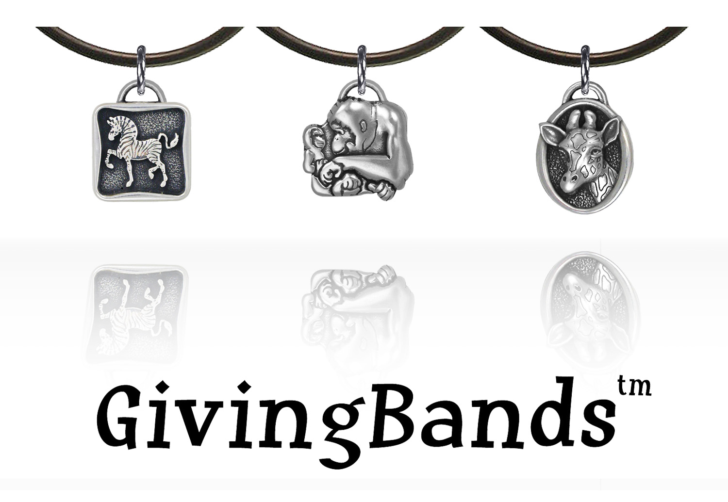 Phx Zoo GivingBands collage w reflection & GB title