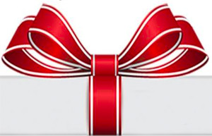 The Charm Store: Your Direct Link to Gifts That Give Back