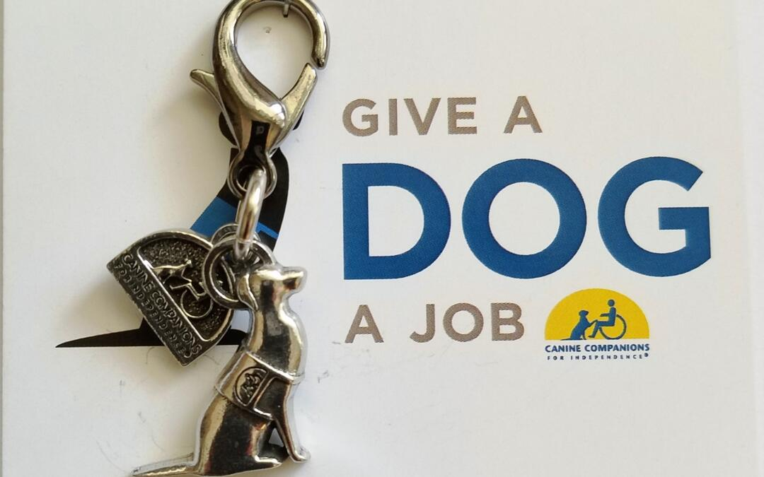 Give a Dog a Job!