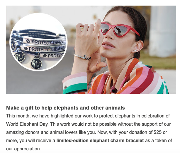 world animal protection message bracelets